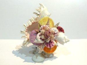 画像1: 巻貝のランプ
